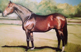 Horse Painting in oil