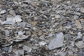 Vyd-Bellangelo - Shale floor.JPG