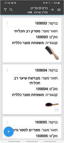 דוגמה להגדרת מסך כרטיס פריט נייד.jpg