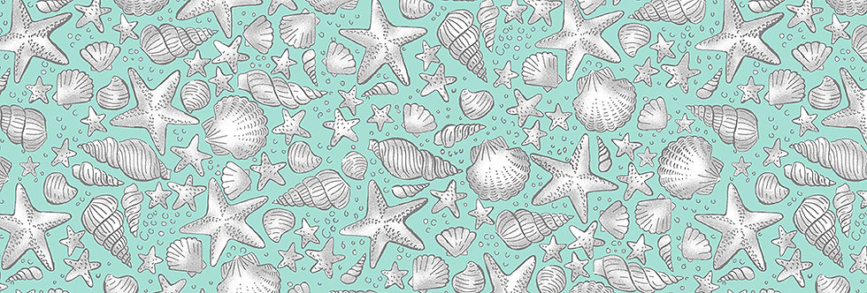 Shells Turquoise