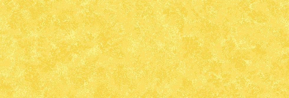 Daffodil Spraytime