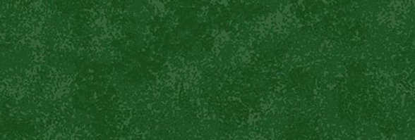 Christmas Green Spraytime