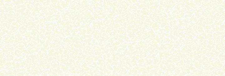 Scroll Cream