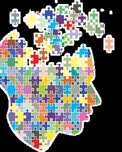 brainpuzzle.png