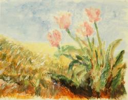 Oklahoma Tulips