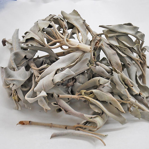 White Sage Leaves Whole