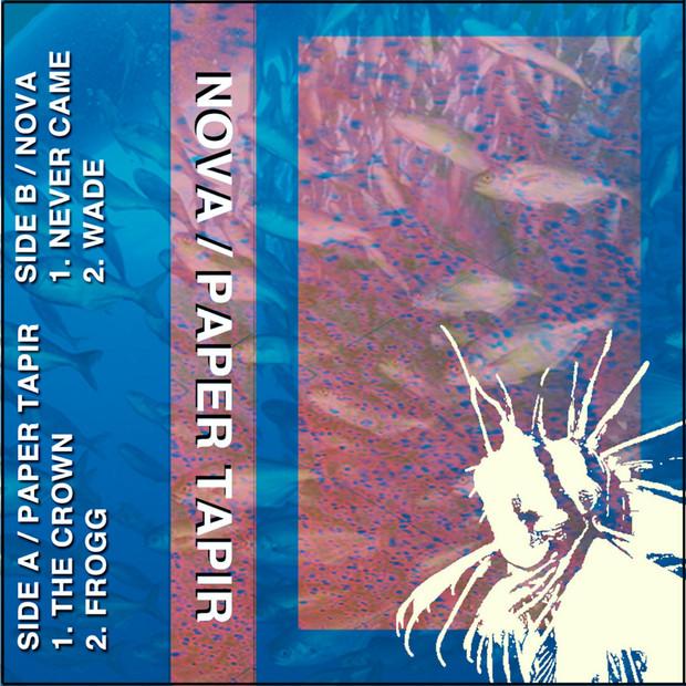 Paper Tapir / Nova - Split