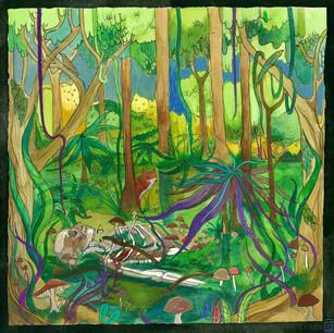 Fuzz Meadows - Dogma//Clairvoyance