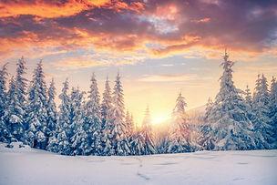 Χειμερινή Συλλογή #28