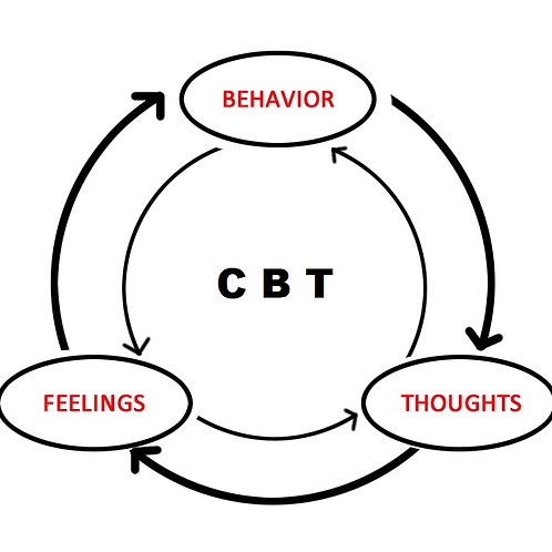 CBT: Introductory Course (BDT: Giriş Kursu)