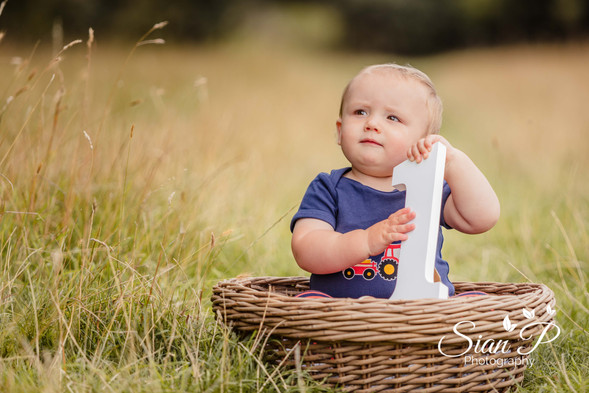 Toddler Sat in Basket