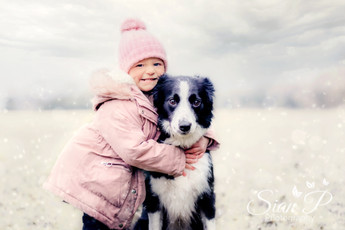 Toddler and Border collie on family photoshoot