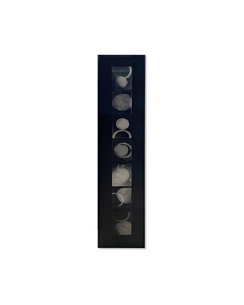 Event Horizon XI