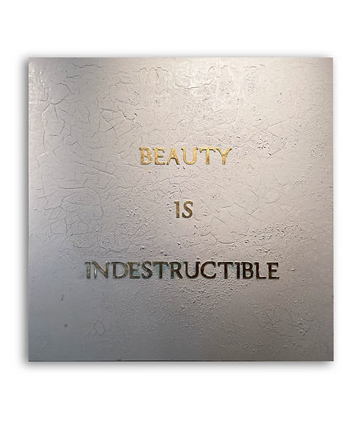 Beauty is Indestructible