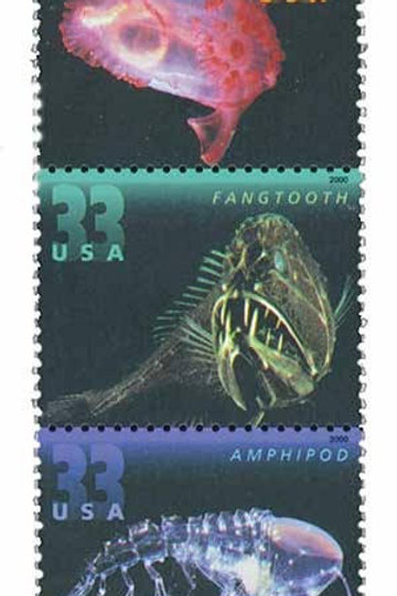15 Unused Deep Sea Creatures Stamps - 33c - Unused Vintage Postage from 2000