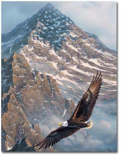 On Freedoms Wings Memorial Folder
