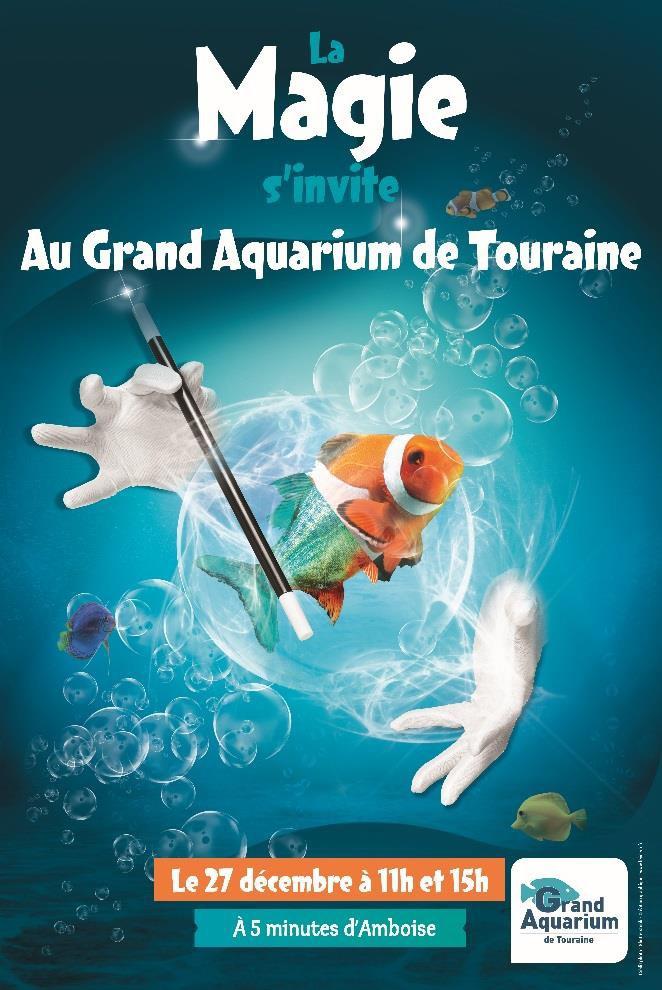 La Magie à l'Aquarium