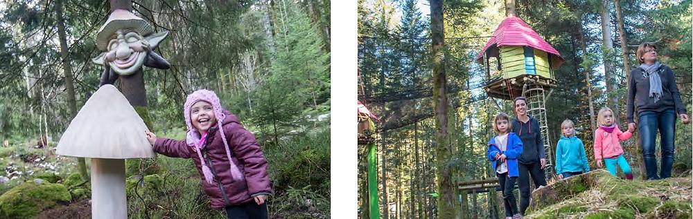 Tête de gnome et cabane dans un arbre
