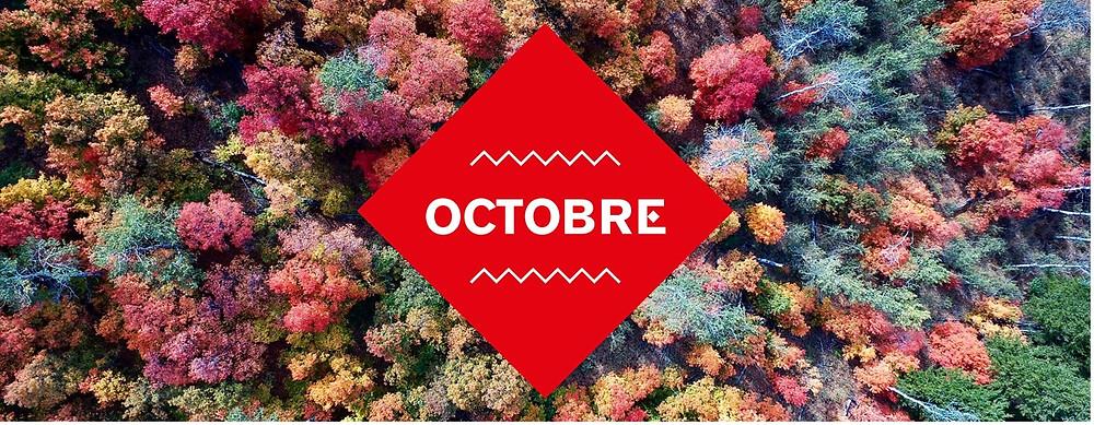 Le carreau du temple - octobre