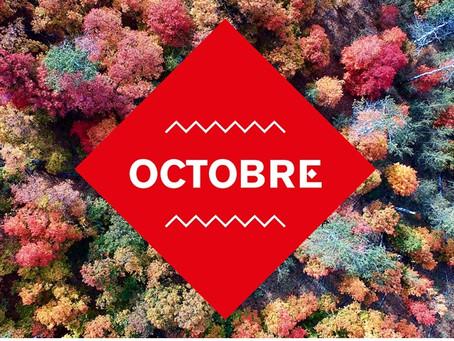 Le Carreau du Temple - à la faveur de l'automne