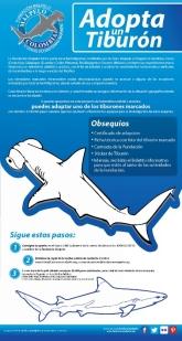 Affiche - Adopta un Tiburon