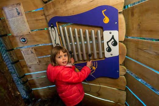 Musique dans une cabane