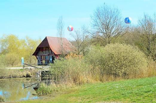 maison alsacienne et montgolfière en fond