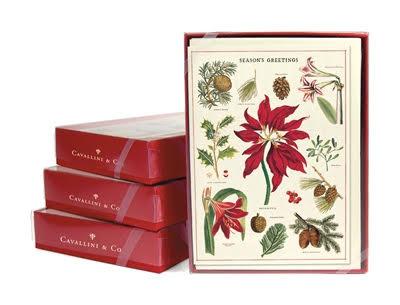Cavallini Boxed Christmas Cards