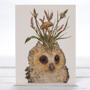 Assortment of Blank Greeting Cards