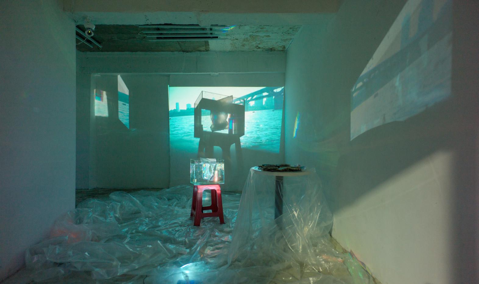 In Vivo Lab 02