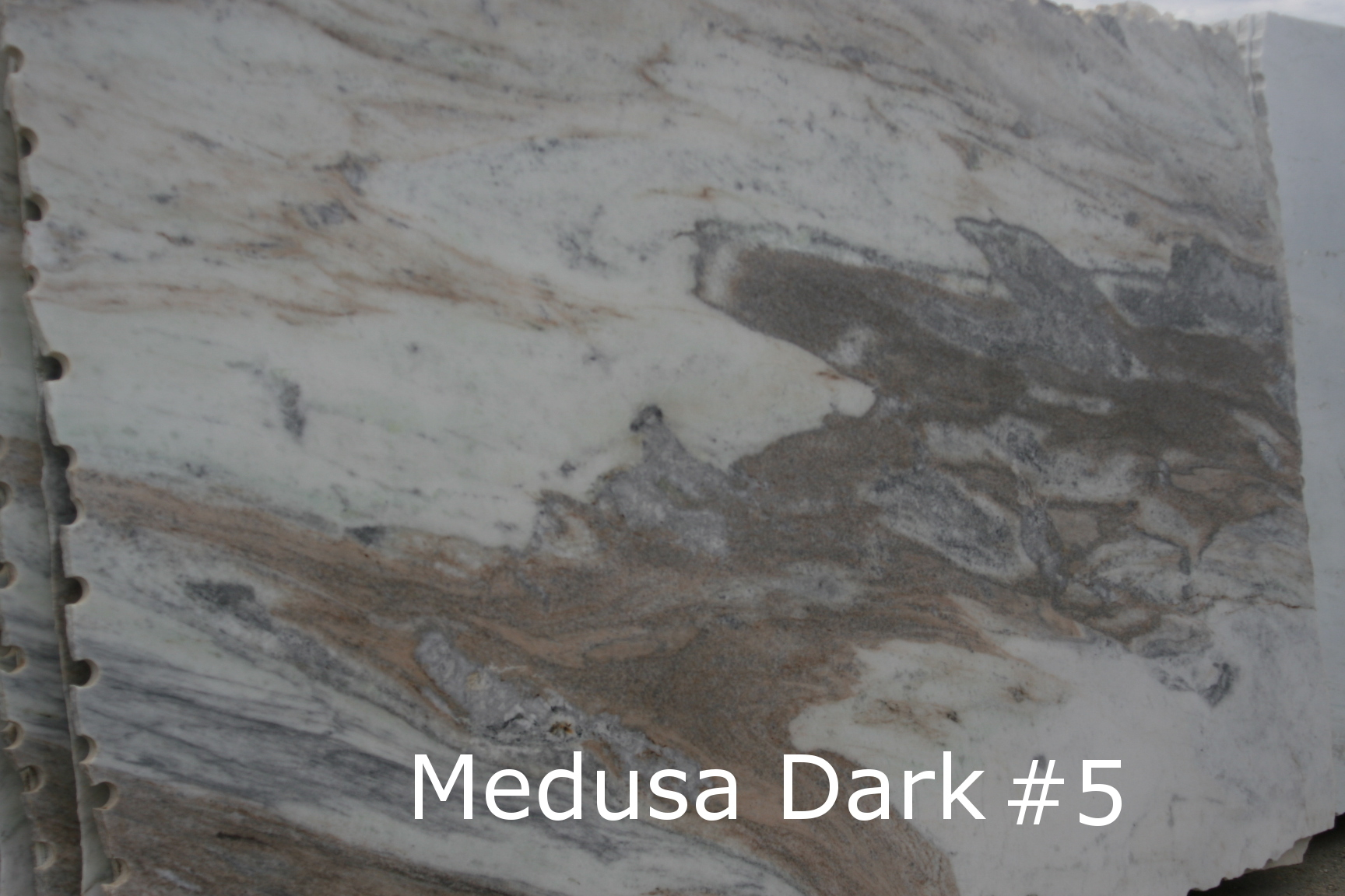 Medusa Dark #5