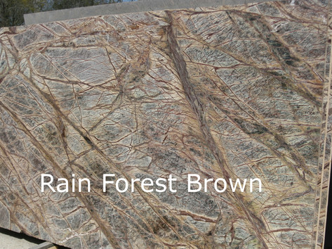 Rainforest Brown Leather