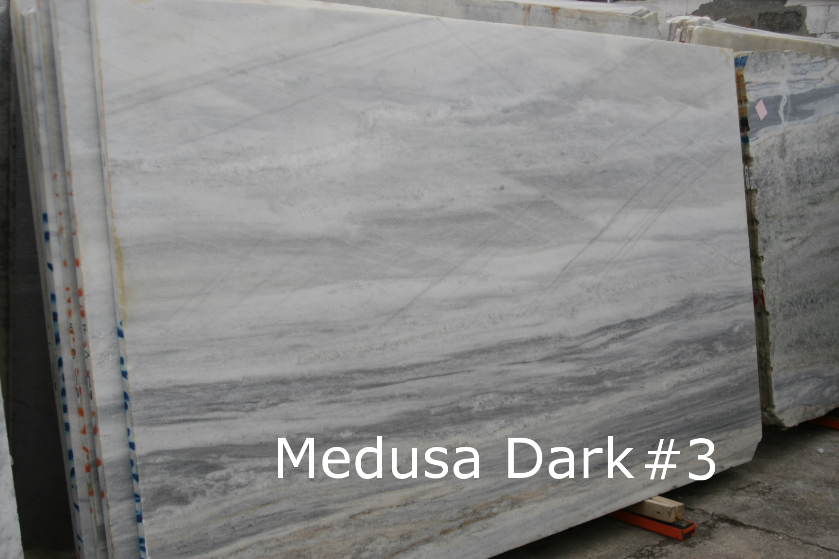 Medusa Dark #3