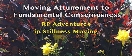 Stillness Movng 7.jpg