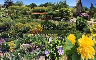 Multi views of Chakra Garden