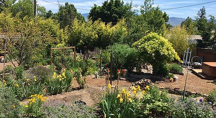 Chakra Garden View