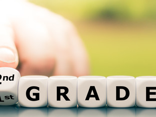 DRIVING INSTRUCTOR GRADES EXPLAINED