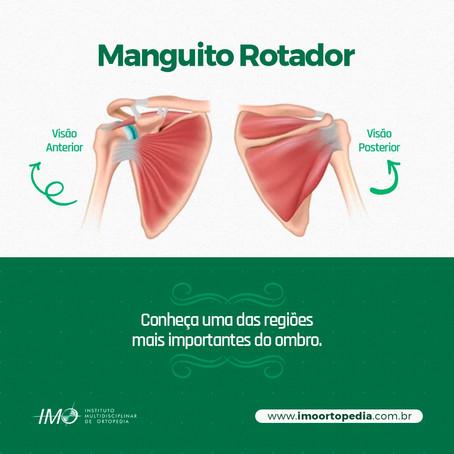 Manguito Rotador - Conheça uma das regiões mais importantes do ombro.