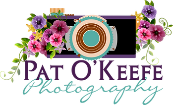 Pat O'Keefe Photography LOGO.png