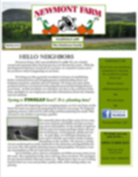 Newmont Spring Newsletter EDDM2GO Ready