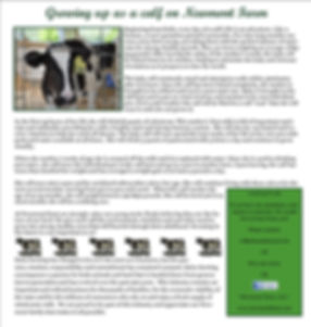 Newmont Summer 2015 Newsletter page 2.jp