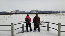 Snowshoeing in Gros Morne National Park