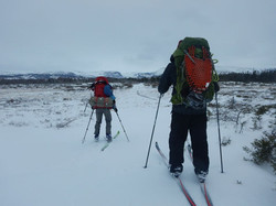 Cross Country Skiing in Gros Morne National Park