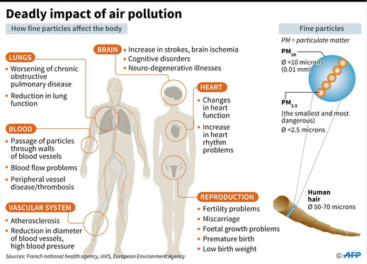 The deadly impact of fine particles on human body