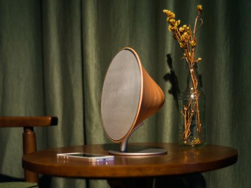 Gingko large Halo speaker in beech wood