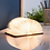 Thumbnail: Gingko mini book light - various