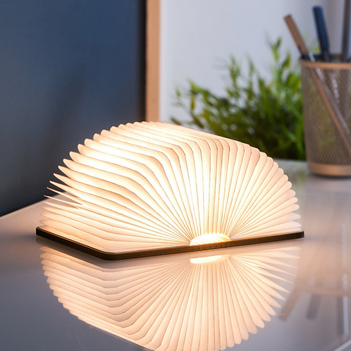 Gingko mini book light - various