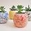 Thumbnail: Ceramic splatter planter pots