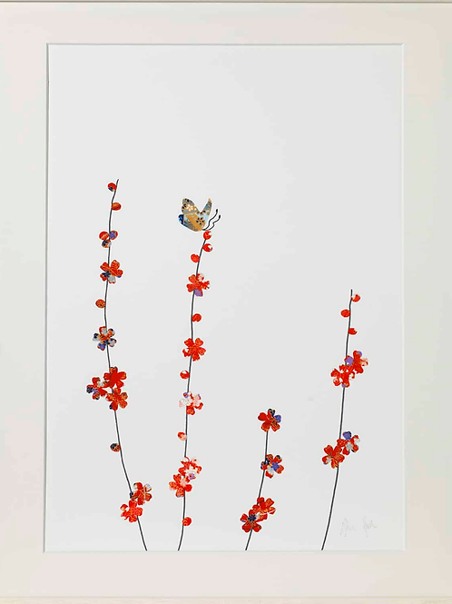 Eloise Hall A4 Mounted Print - Blossom one butterfly