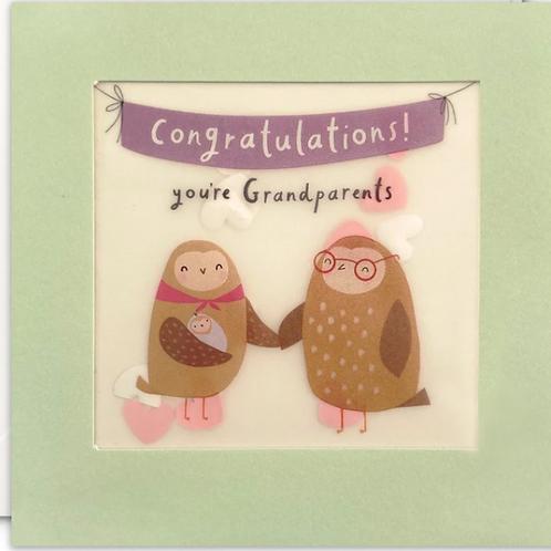 Shakies - Owl grandparentscard